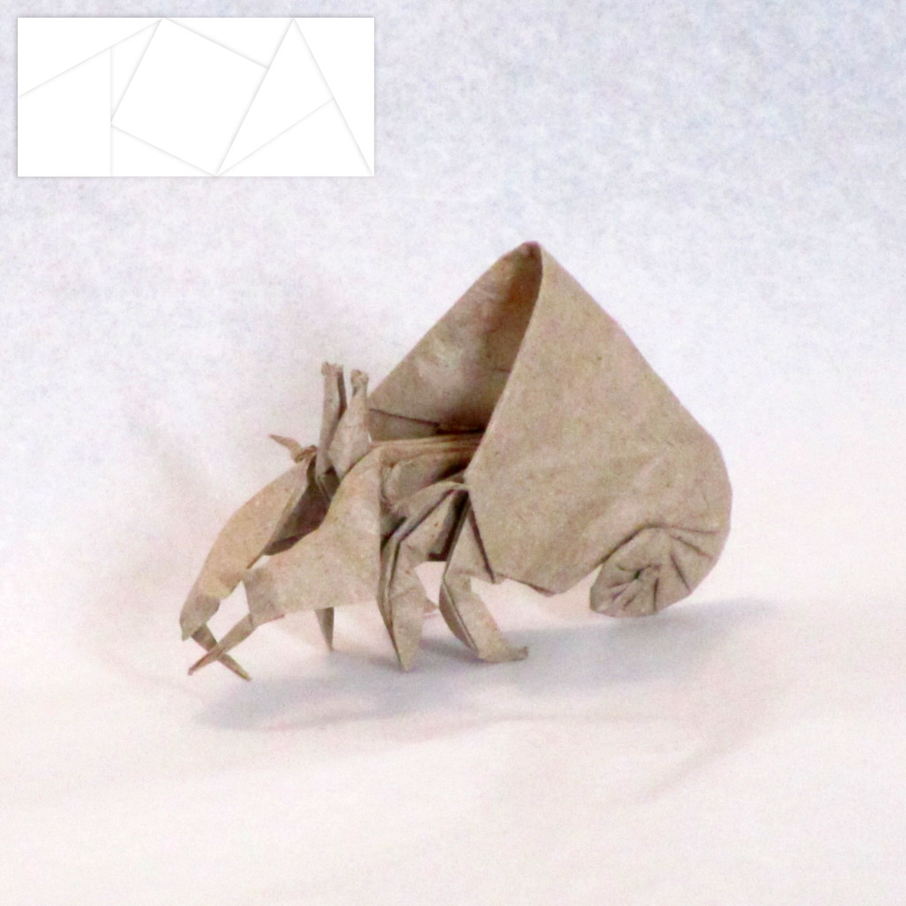Hermit Crab Andrestro Tags Art Animal Paper Origami Sealife Folding