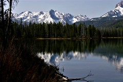 Idaho Alpine Lake (The VIKINGS are Coming!) Tags: mountain lake fish reflection water montagne rockies lago mirror eau flickr bare lac h2o deer alpine elk wilderness extérieur sawtooths amérique