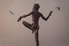 VARANASI : LA DANSE AUX OISEAUX (pierre.arnoldi) Tags: inde india benares varanasi uttarpradesh saddhus yoga danse oiseaux bestportraitsaoi