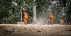 Monks Sweeping (sachasplasher) Tags: monk monks sweep orange sweeping leaves dust tree work working buddhist buddhism