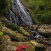 Crabtree Falls (Blue Ridge Parkway)
