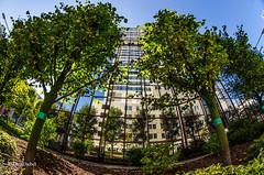 Frankfurt (tina djebel) Tags: fisheye samyang 8mm nikon dslr d7000 frankfurt hessen stadt gebäude haus building house reflection reflektion architektur