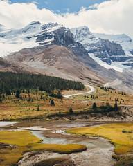 Athabasca Valley (arvin asadi) Tags: athabasca alberta canada jaspernationalpark banffnationalpark landscape nature mountains explorealberta explorecanada