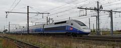[FR-SNCF] TGV Duplex 260 (29119/120) Lyon-Nantes via Paris et SPDC 08/10/2016 DSC_5068_DxO (yael.flament1) Tags: rame tgv duplex sncf 260 saint pierre des corps lyonnantes