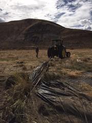 IMG_1426 (Oregon Natural Desert Association) Tags: denny jones ranch weed mat removal 2016 stewardship trips