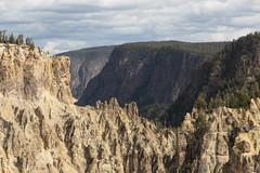 untitled-7 (eenerf) Tags: wyoming yellowstonecanyon yellowstonepark naturalbeauty nature