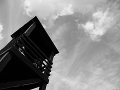 Perspectiva (Maribeljukebox) Tags: parquenatural lagunas lamata torrevieja naturaleza nature flamencos flamingos viewpoint mirador torre tower