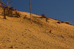 Warren Dunes State Park Sawyer Michigan at the Golden Hour 10-23-2016 0029 (www.cemillerphotography.com) Tags: transverse parabolic linear perched windblown berriencounty sawyer southwestmichigan harborcountry redarrowhighway recreation kiteflying waves lakemichigan marramgrass blowout valley hills ridge camping hiking