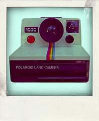 Polaroid 1000 (Leo Reynolds) Tags: xleol30x poladroid polaroid faux fauxpolaroid fake fakepolaroid phoney phoneypolaroid camera groupeffectedcameras