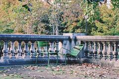 Paris, 15 octobre 2016 (cristina morello) Tags: automne autunno parisienne parisien france francia jardin jardindestuileries tuileries parigi paris