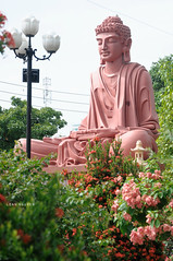 (loanimages) Tags: temple saigon buddhist buddha sculpture statue carved wooden sitting construction sandstone asian flowers