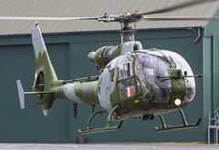 EGVP - Westland SA341B Gazelle AH1 - Army Air Corps - XW847 (lynothehammer1978) Tags: egvp aacmiddlewallop aac armyaircorps xw847 westlandsa341bgazelleah1