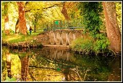C'est l'automne au parc ! (Les photos de LN) Tags: automne nature parc moulineau gradignan bordeaux pont eaubourde rivire coursdeau couleurs lumire teinteschaudes feuillages beaut calme promenade balade
