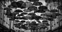 The Superdry Store (rhfo2o - rick hathaway photography) Tags: rhfo2o canon canoneos7d bath somerset umbrella rain raining rainbowcolours bw blackandwhite mono street