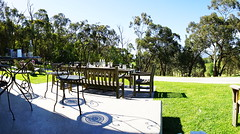 Shadows at Medhurst Wines (Blue Mtns. bush girl) Tags: medhurst wines yarra valley victoria australia
