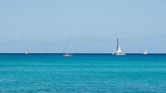 Horizon (Oliver Leveritt) Tags: nikond7100 afsdxvrnikkor18200mmf3556gifed oliverleverittphotography hawaii oahu waikiki waikikibeach boat sailboat horizon ocean sky blue