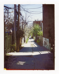 Ruelle VIII (Ian David Blüm) Tags: montreal alley ruelle sunlight shadows textures greenery lines posts polaroid land camera automatic 100 fuji fpc100 instant film