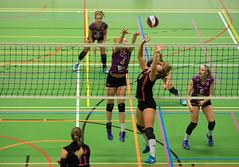 1B260596 (roel.ubels) Tags: vv utrecht eurosped galgewaard volleybal volleyball 18 finale nationale beker