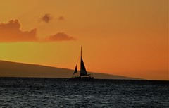 sunset (joybidge) Tags: trishcanada naturepatternscanada mauihawaii water