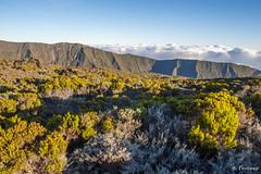 Réunion (nFerrieux) Tags: réunion island piton de la fournaise