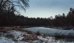 Silent Morning (typray) Tags: winter forest snow river nikon d810 cloud clouds cloudy ice water dark tones morning nature park outside outdoors