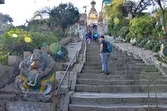 DSC_3470stairs (BasiaBM) Tags: swayambhunath monkey temple kathmandu nepal