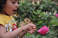 هلا العيد (إجلال) Tags: هلا صور ملكه جمال لولو بنات العيد سعوديه اطفال جنان خلفيات صغار حلا طفله براءه طفوله الطفله