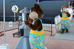 Having fun at Castaway Cay! (Disney Dan) Tags: bahamas boat castawaycay character characters chip cruise cruiseline dcl dale disney disneycharacter disneycharacters disneycruise disneycruiseline disneymagic disneymagiceasterncaribbean disneymagiceasterncaribbeancruise disneypics disneypictures disneyscastawaycay disneysprivateisland dock dockarea easterncaribbeanitinerary magic mickeyfriends ship shipdock tac thebahamas thedock themagic tic otherdisneydestinations