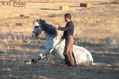 Jinete con su caballo (O_Prieto) Tags: horses espaa horse les caballo cheval caballos oscar spain amazon with danse leon rider jinete con avec bailando chevaux amazona dances prieto lespagne