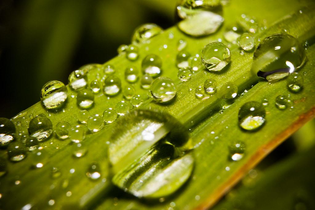 20-52 - Water Drops.jpg