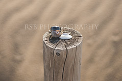 webRM rings (Ryan S Burkett | RSB Photography) Tags: wedding beach cake photoshop de mirror coast engagement sand nikon kiss details east rings 1750 28 delaware 18 50 bounce prep fill blend facepalm cs6 pw3 d300s sb910 rsbphotography pocketwizard3