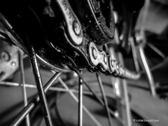 bike-chain-grime.jpg (r.nial.bradshaw) Tags: blackandwhite macro bike bicycle hub photo nikon image spokes grease chain creativecommons pointandshoot gears stockphoto drivetrain stockphotography chainlinks royaltyfree attributionlicense incameraedit lightroom4 nikons3300 rnialbradshaw
