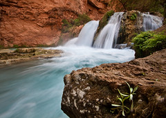 Havasu Canyon (danfeeser) Tags: blue arizona people green water az canyon falls havasu havasupai grandy