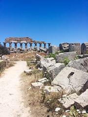 Selinunte (muckster) Tags: travel italy ruins sicily sicilia selinunte greektemple triscina