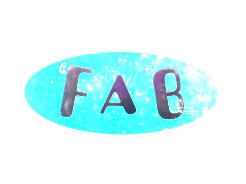 FAB 308