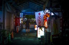 Hiroshima, Japan (inefekt69) Tags: japan nikon d5100 dslr nihon nippon travel city hiroshima night bomb 日本 広島 tumblr