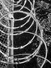 Barbed Wires (shaire productions) Tags: blackandwhite bw abstract geometric monochrome architecture composition photography photo wire pattern image artistic picture pic monotone structure architectural line artsy photograph wires frame repetition barbedwire abstraction framing imagery sherriethai shaireproductions