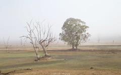 Misty (keikoellis) Tags: autumn mist fog victoria hume borderfx