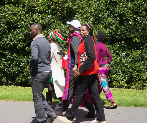 I HAD A WONDERFUL DAY AT AFRICA DAY 2015 [FARMLEIGH HOUSE IN PHOENIX PARK]-104533