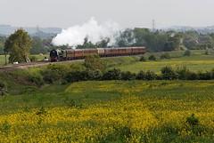 Duchess on GWR Metals (D1059) Tags: pacific culham lms britishrailways 462 duchessofsutherland uksteam 46233 oxfordshireexpress 1z54 coronationpacific 1638didcotmanchestervictoria
