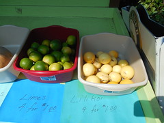 Passion Fruit and Limes (jimmywayne) Tags: hawaii hawaiicounty fruitstand fruit bigisland lime passionfruit