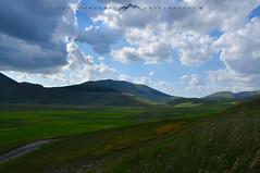 Castelluccio landscape_3707 (c) Tags: nikond90 castelluccio sibillini umbria