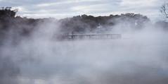 Rotorua Hot Springs-11