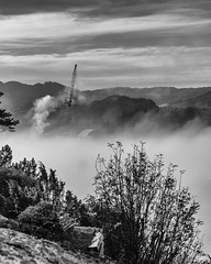 """""""Morning mist"""" (Terje Helberg Photography) Tags: mist trees sky sunrise fog morning clouds industry mountain crane foggy sotra haganes bw blackandwhite monochrome"""