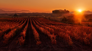 Sunrise in La Rioja