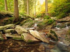 Unterwegs im Thringer Wald (Benni128) Tags: thringen bach fluss wald wasser graufilter polfilter deutschland germany river forest olympus em10 omd samyang 12mm