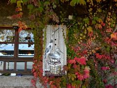 Dcor automnal (a.laruelle) Tags: vosges automne volet couleurs fentre