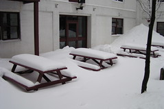 St. John's, Snow Covered Tables (Joseph Topping) Tags: newfoundland canada winter
