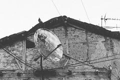 Kosovo (eleflores) Tags: kosovo serbia serbs yugoslavia yugoslave balkans balcans balcanes