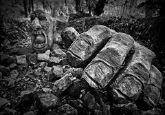 . . . all you need is hands (orangecapri) Tags: orangecapri october woods hand figure scary face woodcarving woodland creepy bw black white crichtramwaymuseum crich dark hmbt bokeh thursday monochrome fingers trees stones ground explore explored inexplore